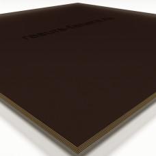 Ламинированная фанера 1220*2440 мм толщина 12мм гладкая/сетка (F1/W1)